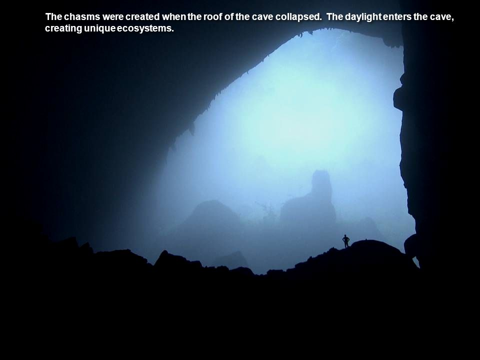 The chasms were created when the roof of the cave collapsed