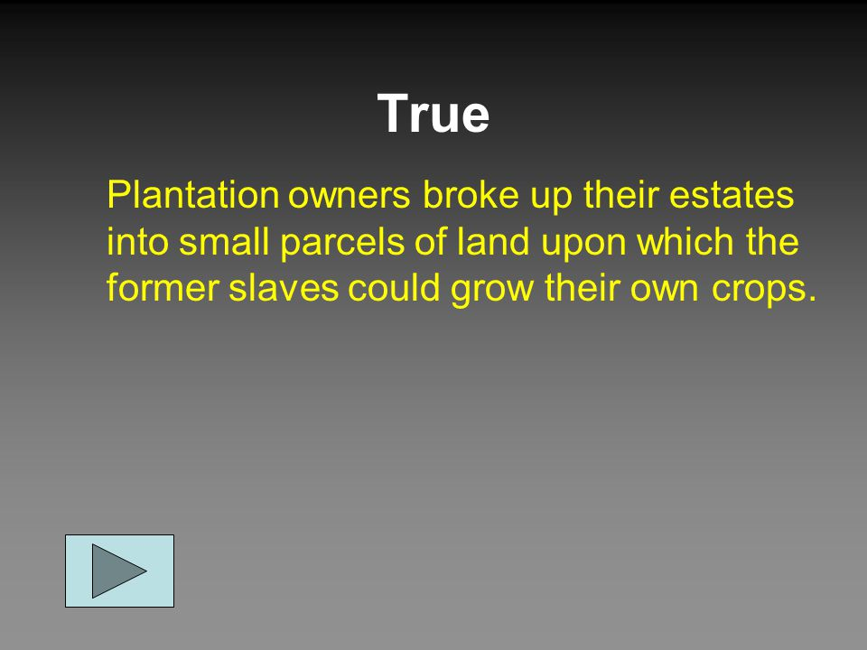 True Plantation owners broke up their estates into small parcels of land upon which the former slaves could grow their own crops.