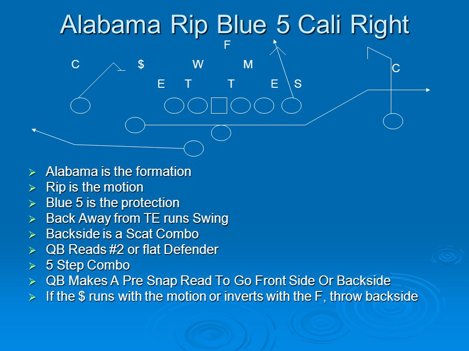 Alabama Rip Blue 5 Cali Right