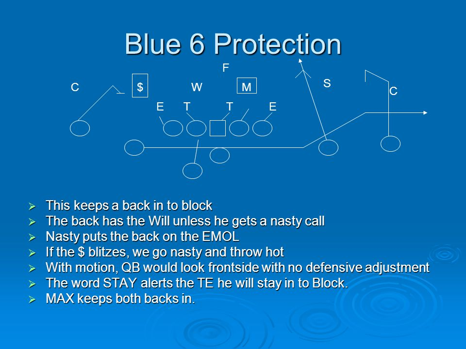 Blue 6 Protection This keeps a back in to block