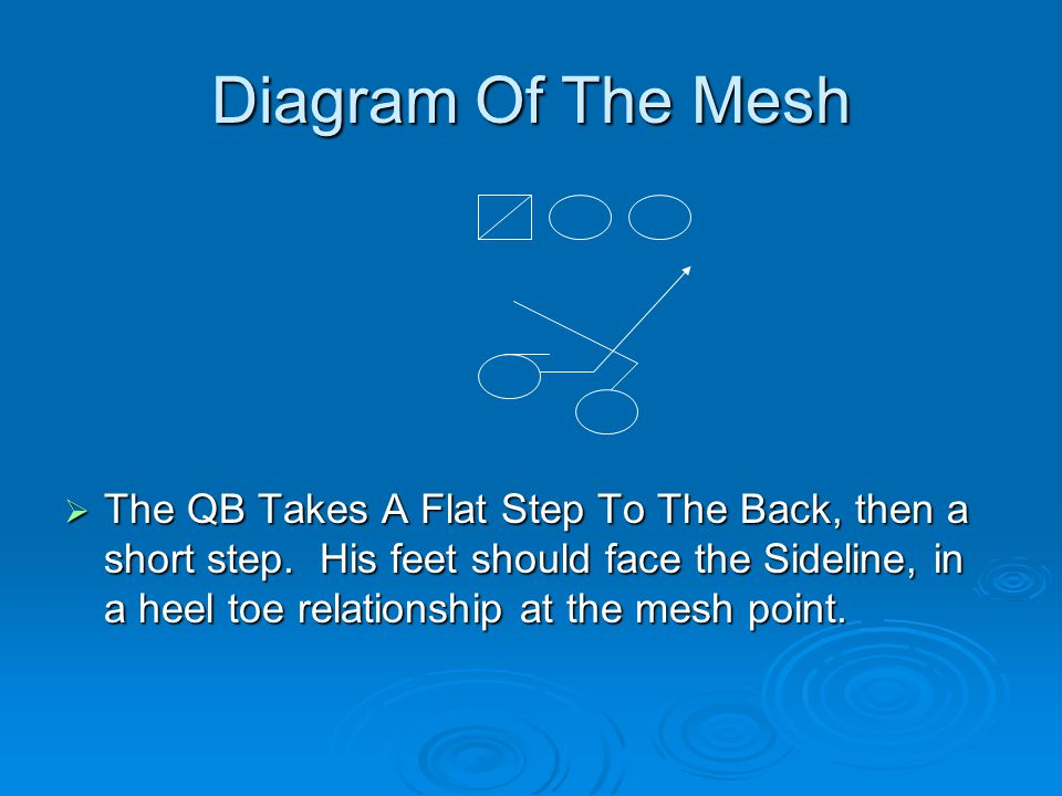 Diagram Of The Mesh