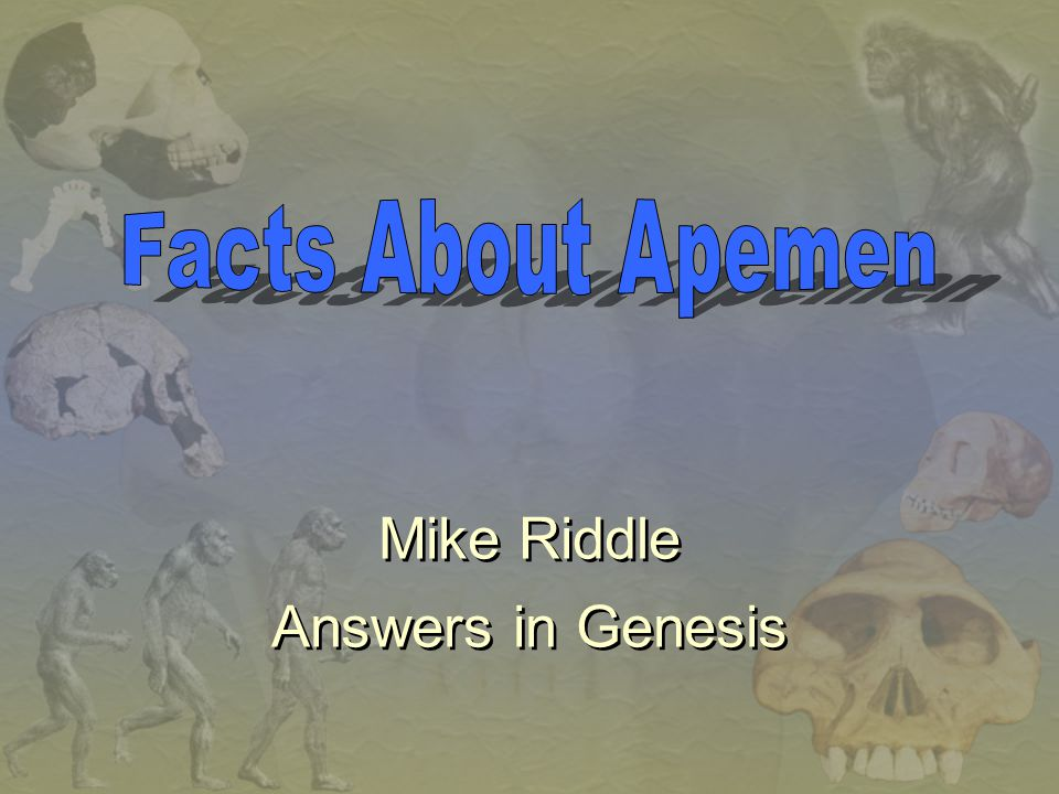 Facts About Apemen Mike Riddle Answers in Genesis