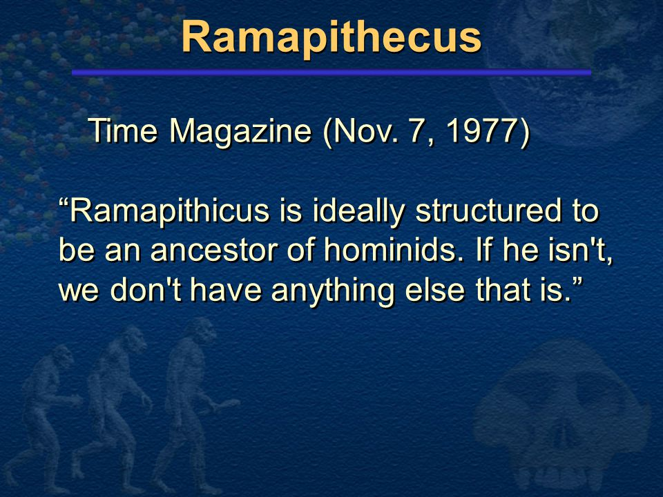 Ramapithecus Time Magazine (Nov. 7, 1977)