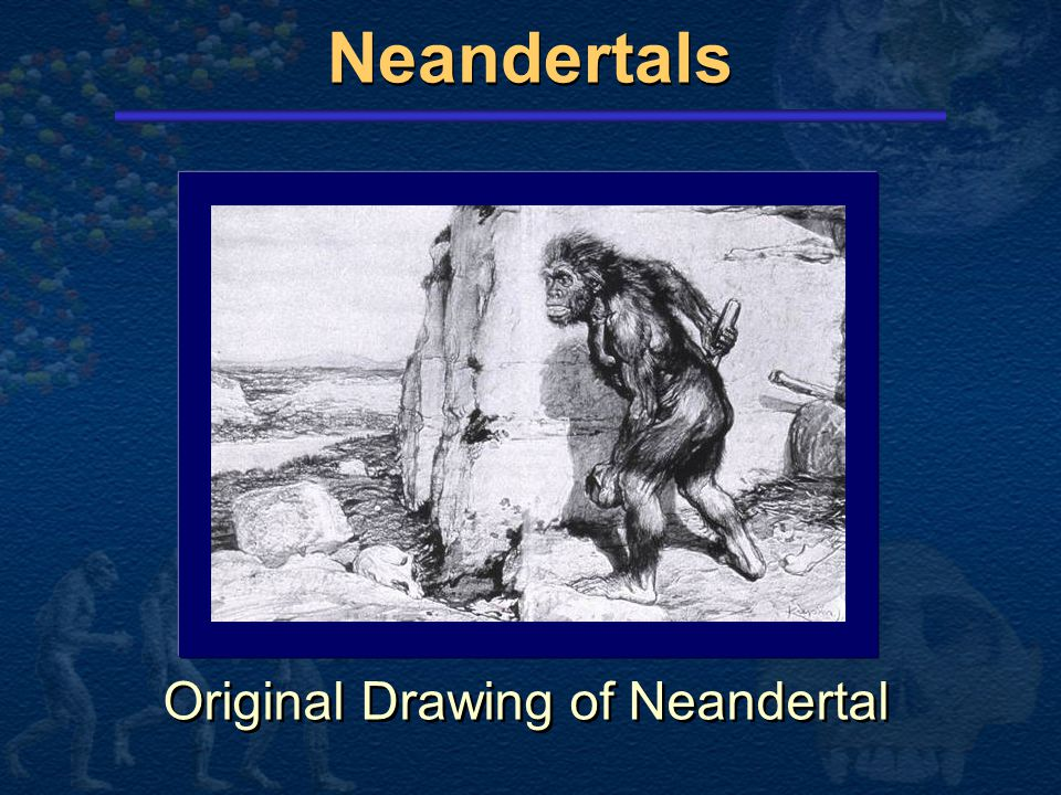 Original Drawing of Neandertal
