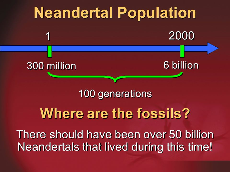 Neandertal Population