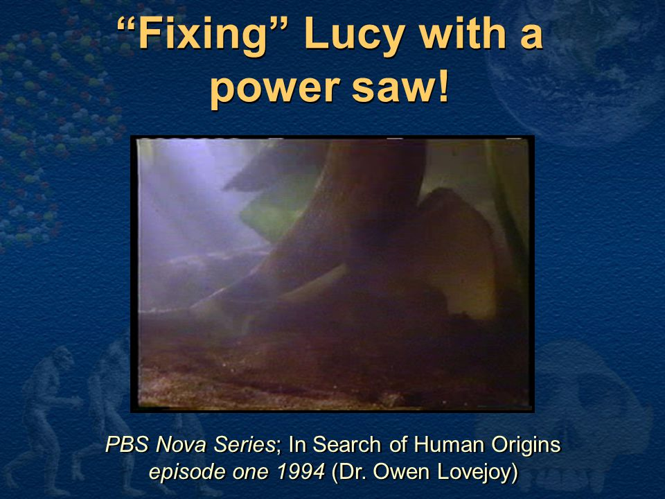 Fixing Lucy with a power saw!