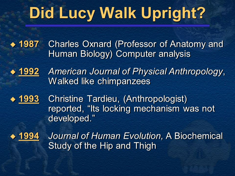 Did Lucy Walk Upright 1987 Charles Oxnard (Professor of Anatomy and Human Biology) Computer analysis.