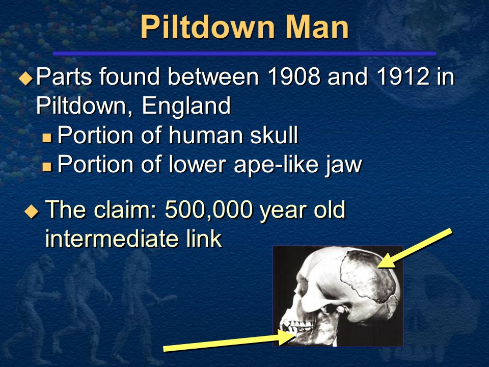 Piltdown Man Parts found between 1908 and 1912 in Piltdown, England
