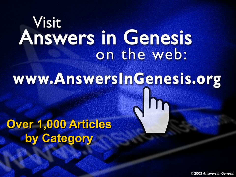 Over 1,000 Articles by Category
