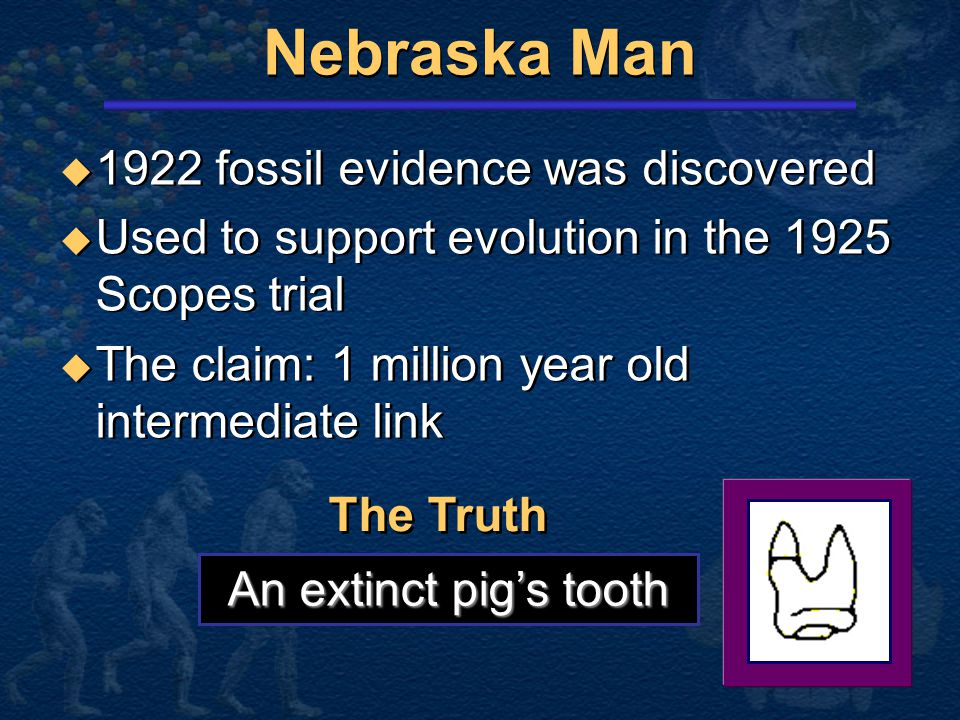 Nebraska Man 1922 fossil evidence was discovered