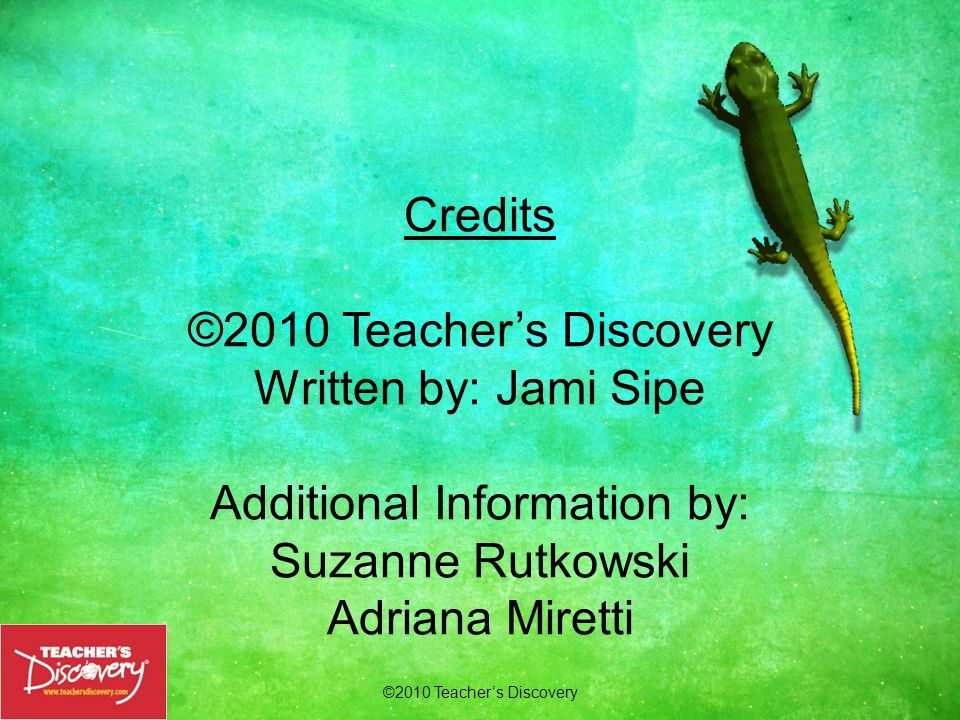 Credits ©2010 Teacher's Discovery Written by: Jami Sipe Additional Information by: Suzanne Rutkowski Adriana Miretti Order Today.
