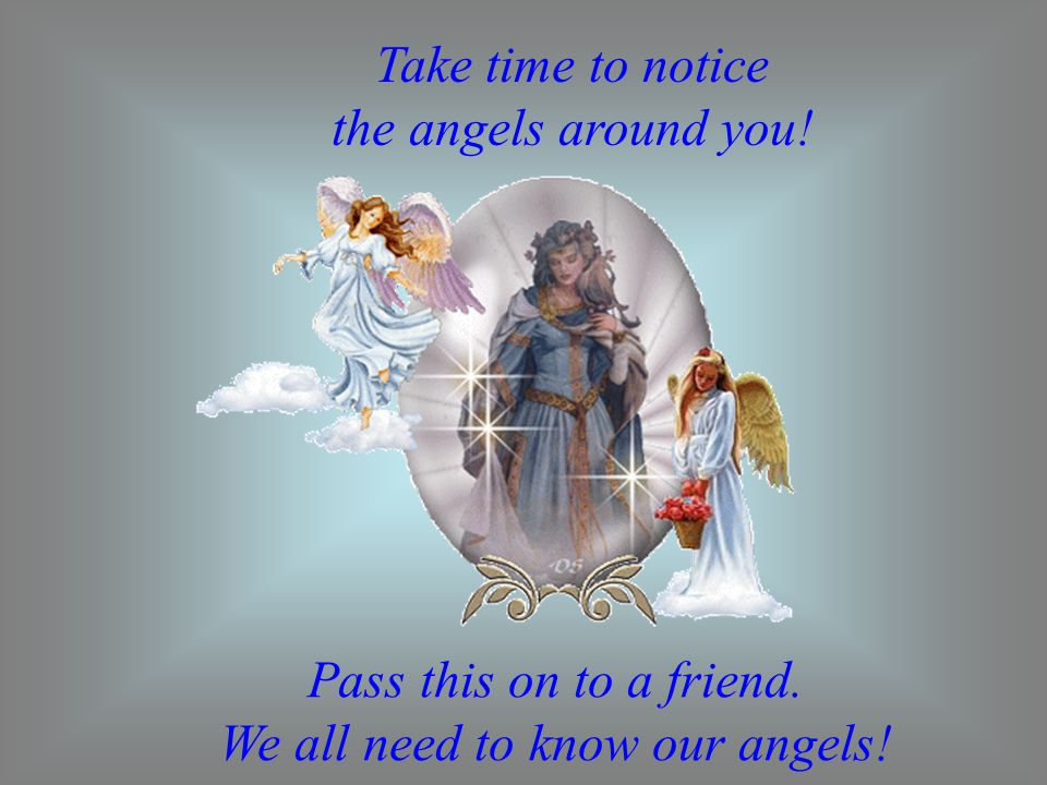 Take time to notice the angels around you!