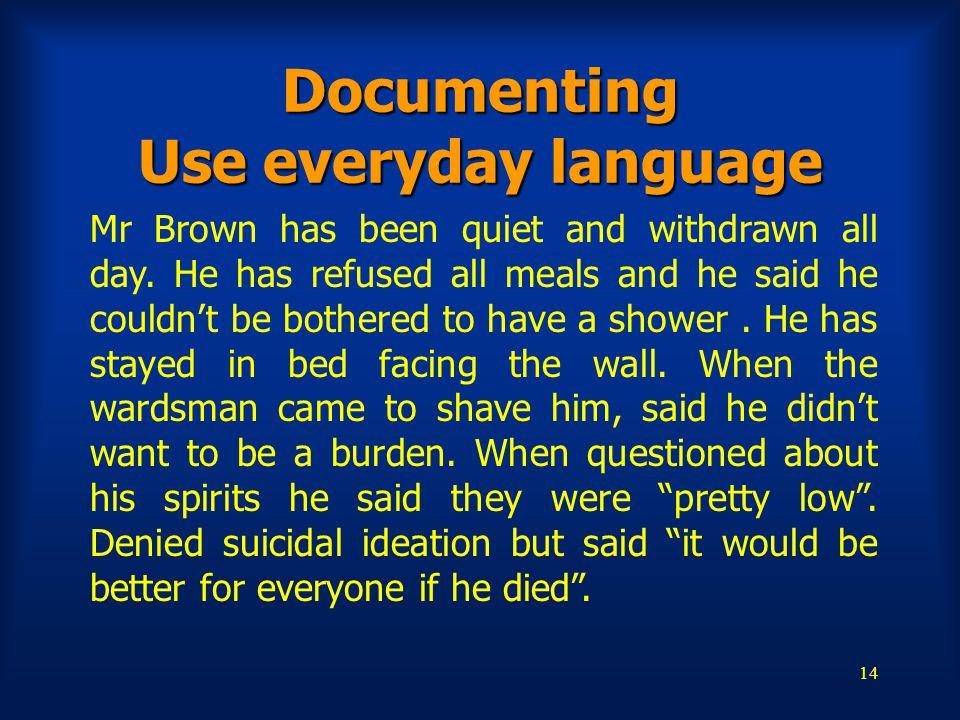 Documenting Use everyday language