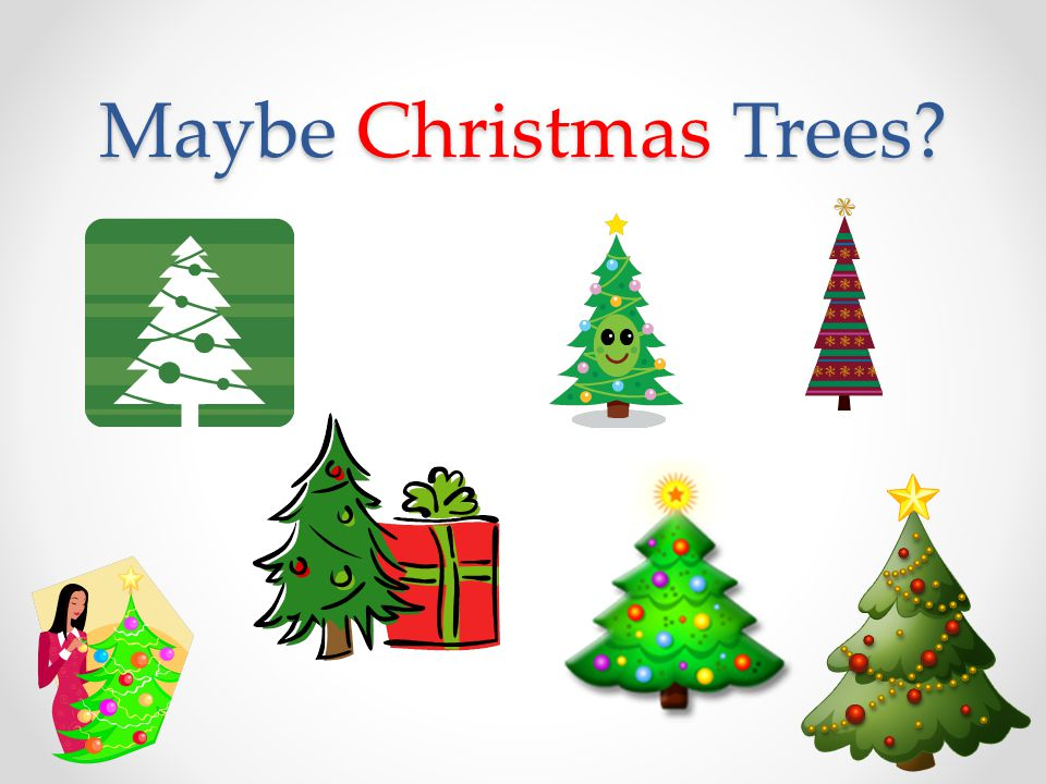 Maybe Christmas Trees