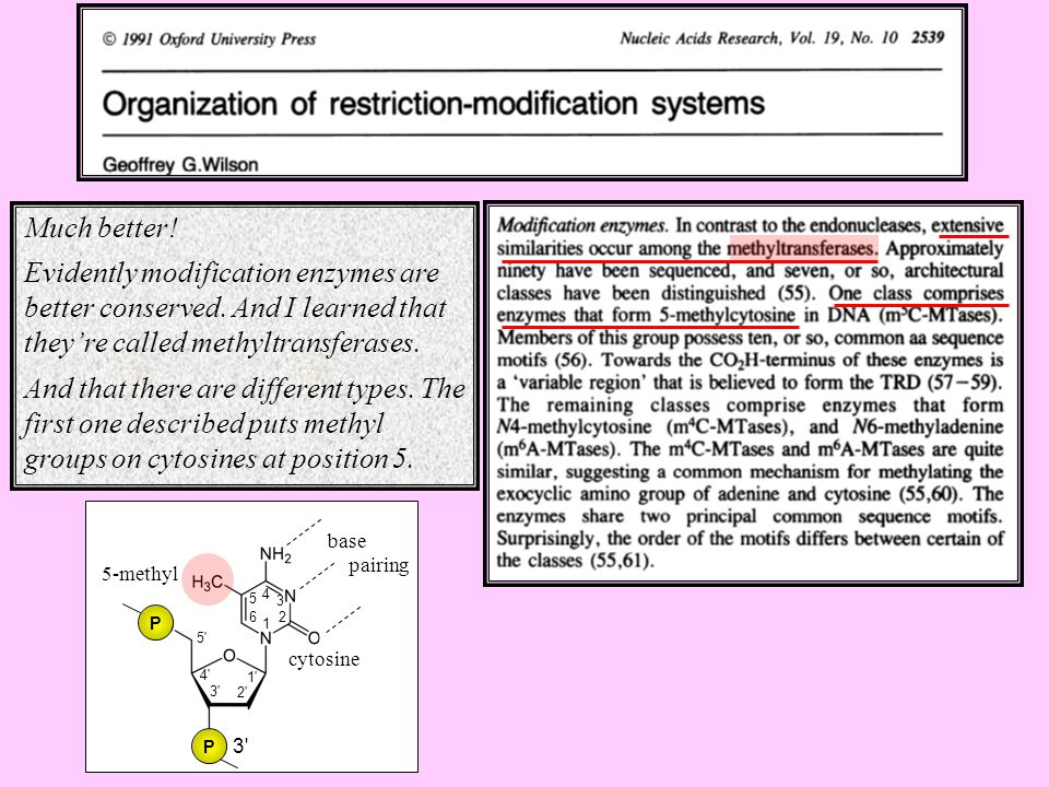Much better! Evidently modification enzymes are better conserved. And I learned that they're called methyltransferases.