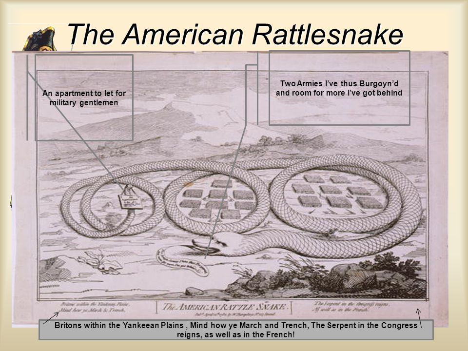 The American Rattlesnake