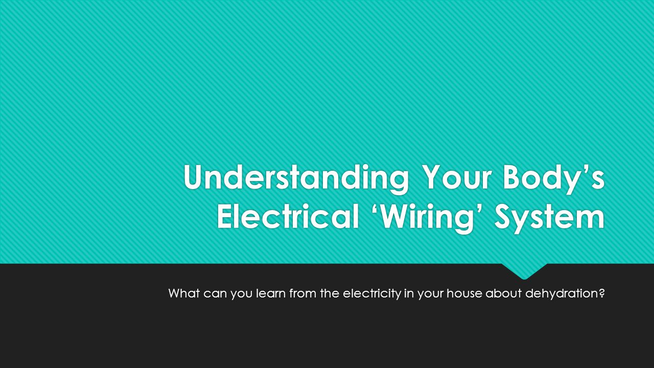 Understanding Your Body's Electrical 'Wiring' System