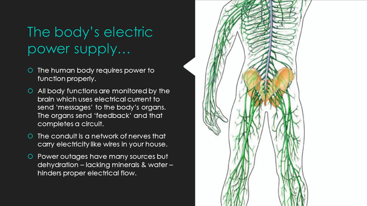The body's electric power supply…