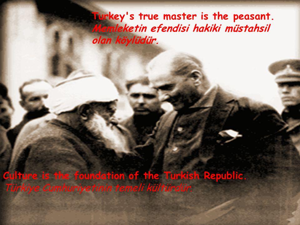 Turkey s true master is the peasant