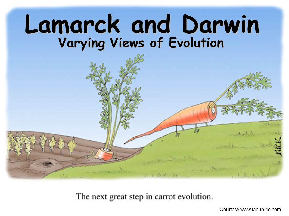 Varying Views of Evolution