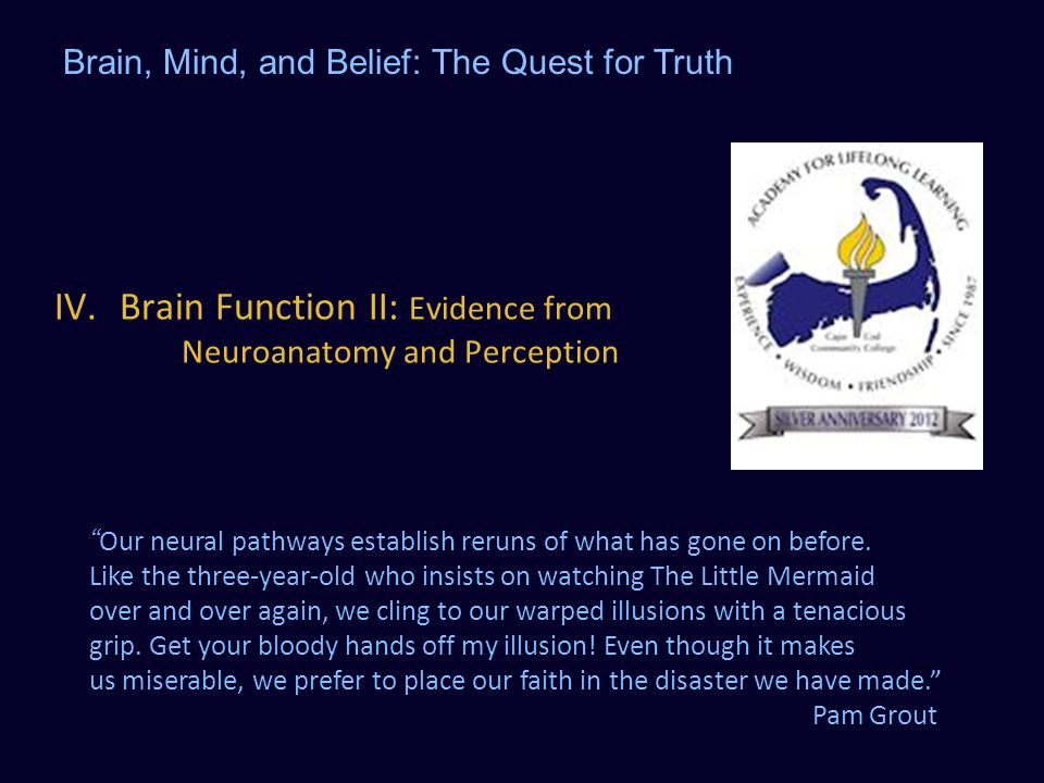 Brain Function II: Evidence from Neuroanatomy and Perception