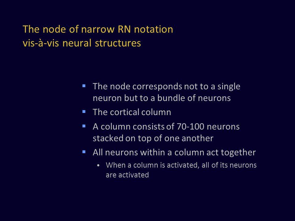 The node of narrow RN notation vis-à-vis neural structures