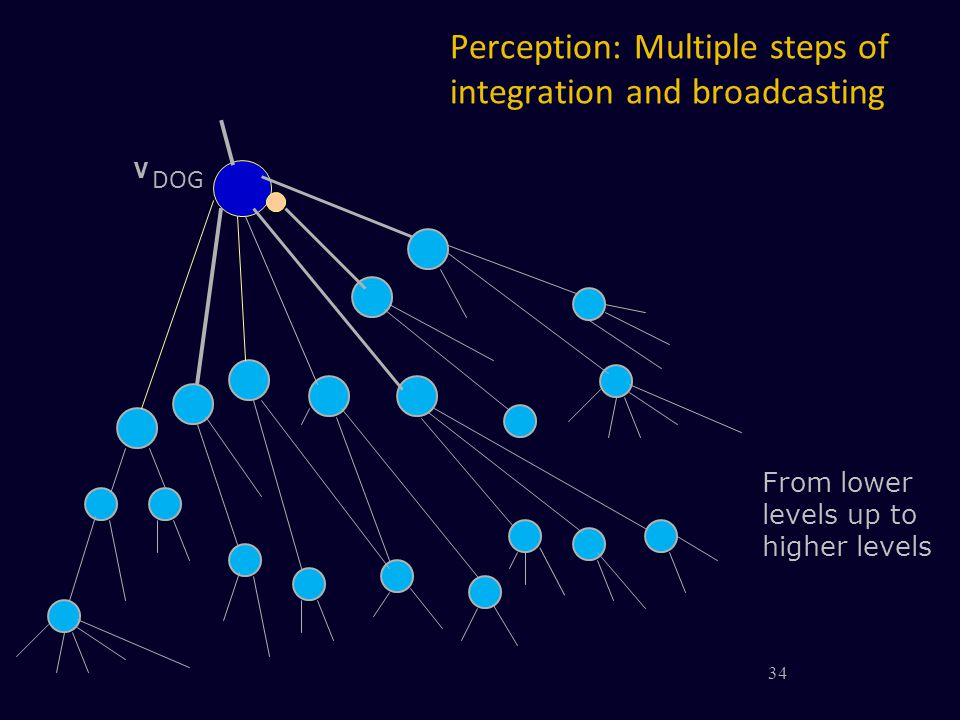 Perception: Multiple steps of integration and broadcasting