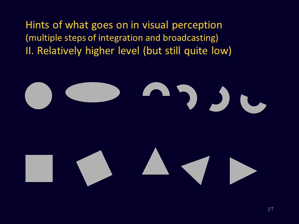 Hints of what goes on in visual perception (multiple steps of integration and broadcasting) II.
