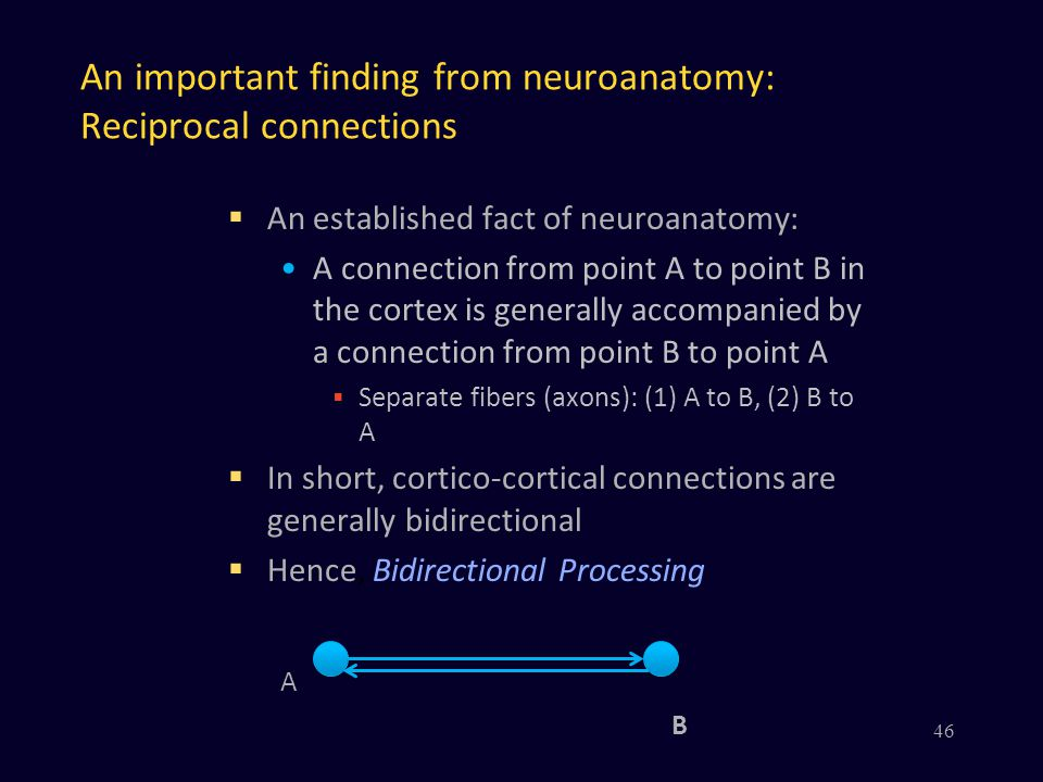 An important finding from neuroanatomy: Reciprocal connections