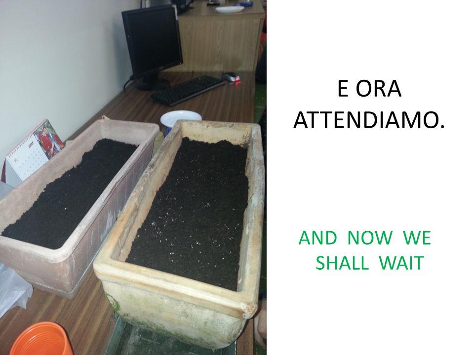 E ORA ATTENDIAMO. AND NOW WE SHALL WAIT