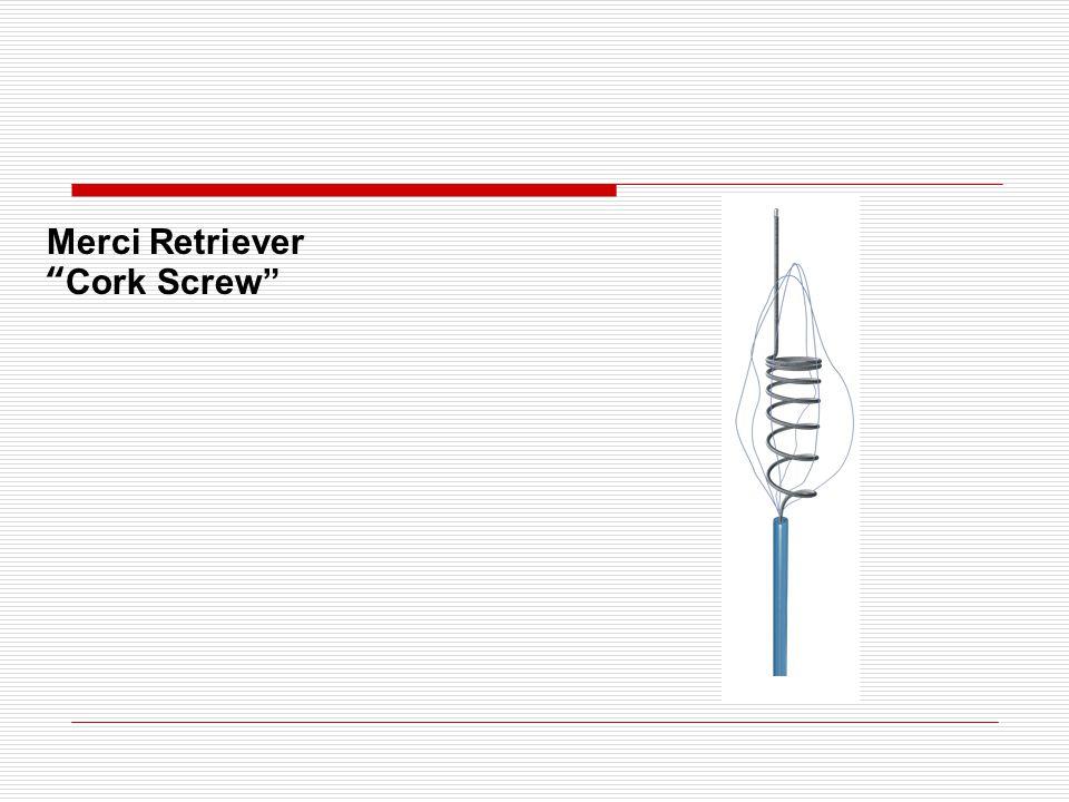 Merci Retriever Cork Screw