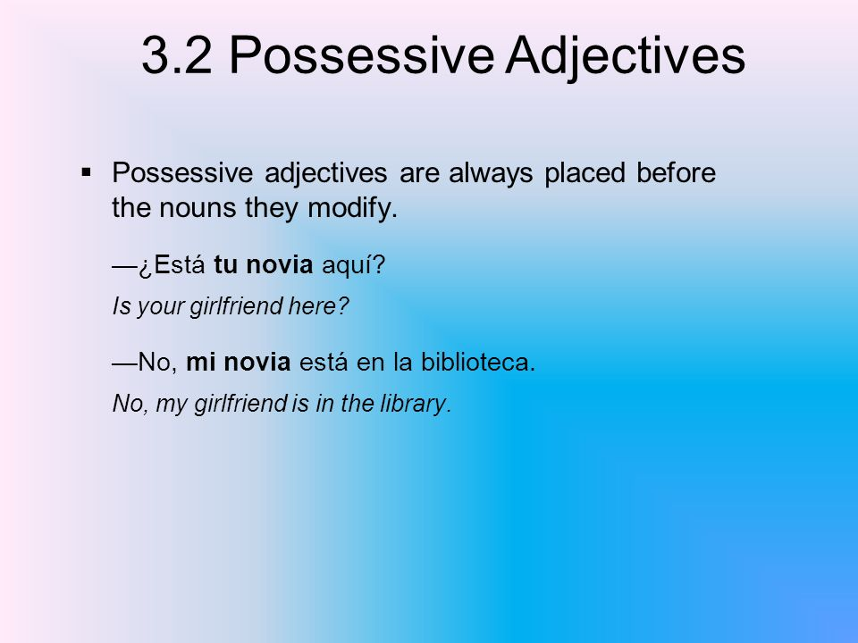 Possessive adjectives are always placed before the nouns they modify.