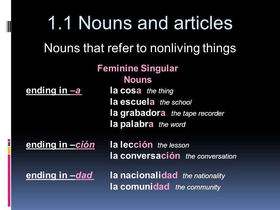 Feminine Singular Nouns