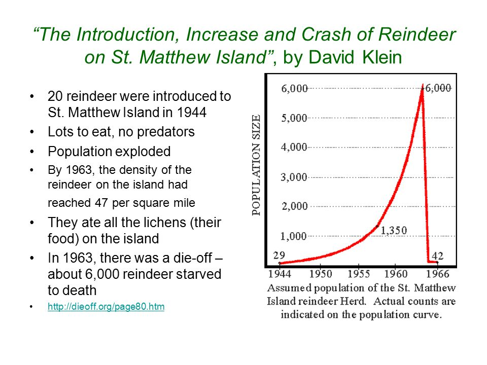 The Introduction, Increase and Crash of Reindeer on St