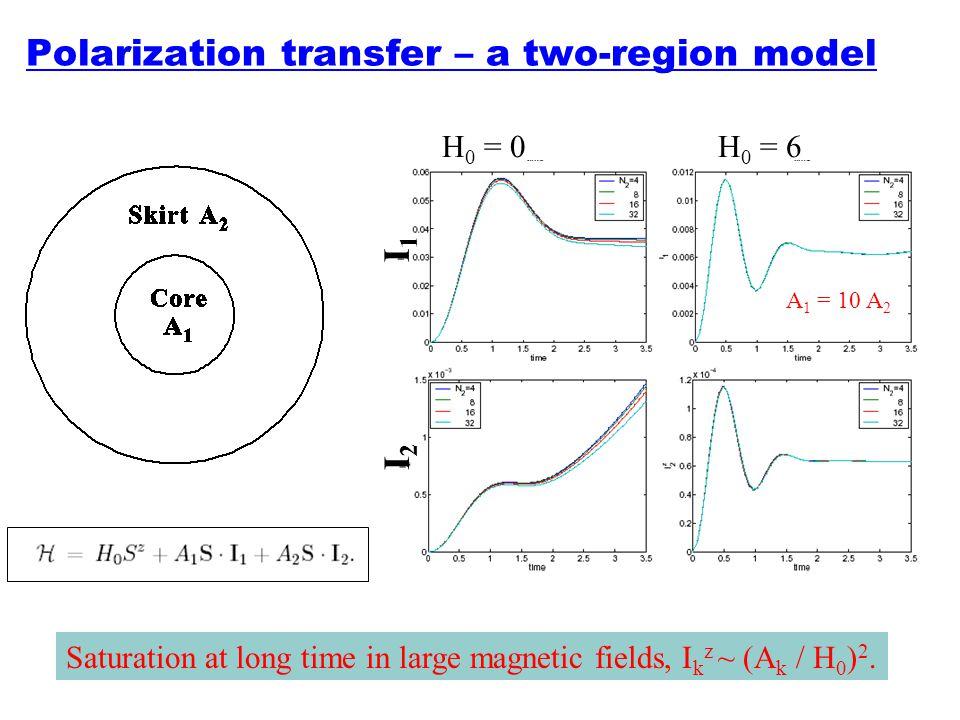 Polarization transfer – a two-region model