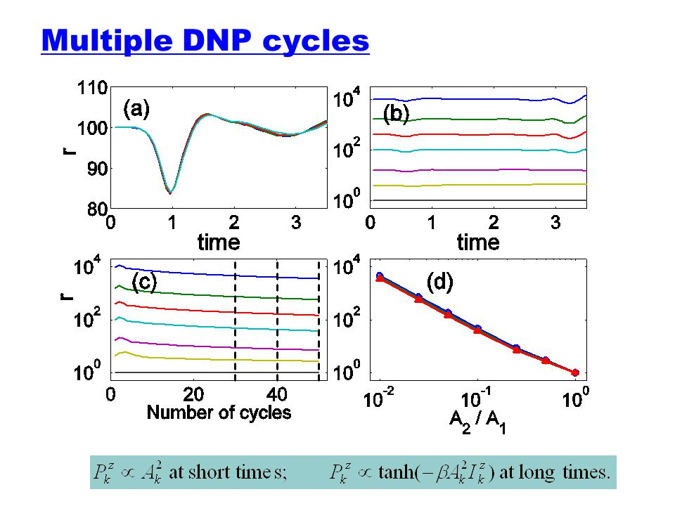 Multiple DNP cycles