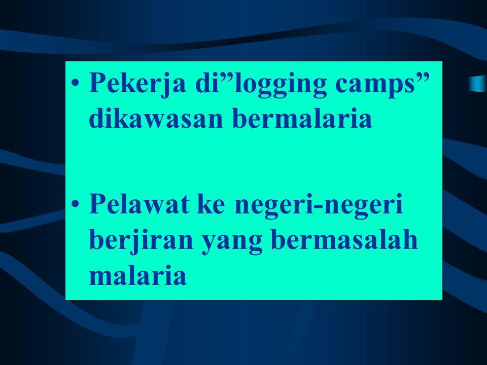 Pekerja di logging camps dikawasan bermalaria