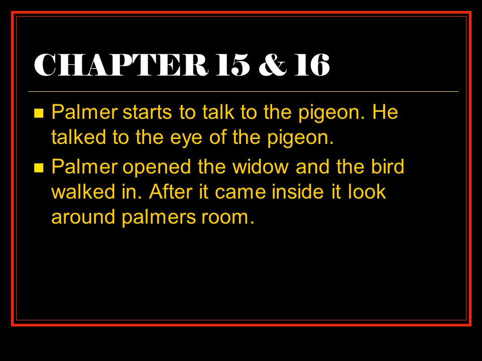 CHAPTER 15 & 16 Palmer starts to talk to the pigeon. He talked to the eye of the pigeon.
