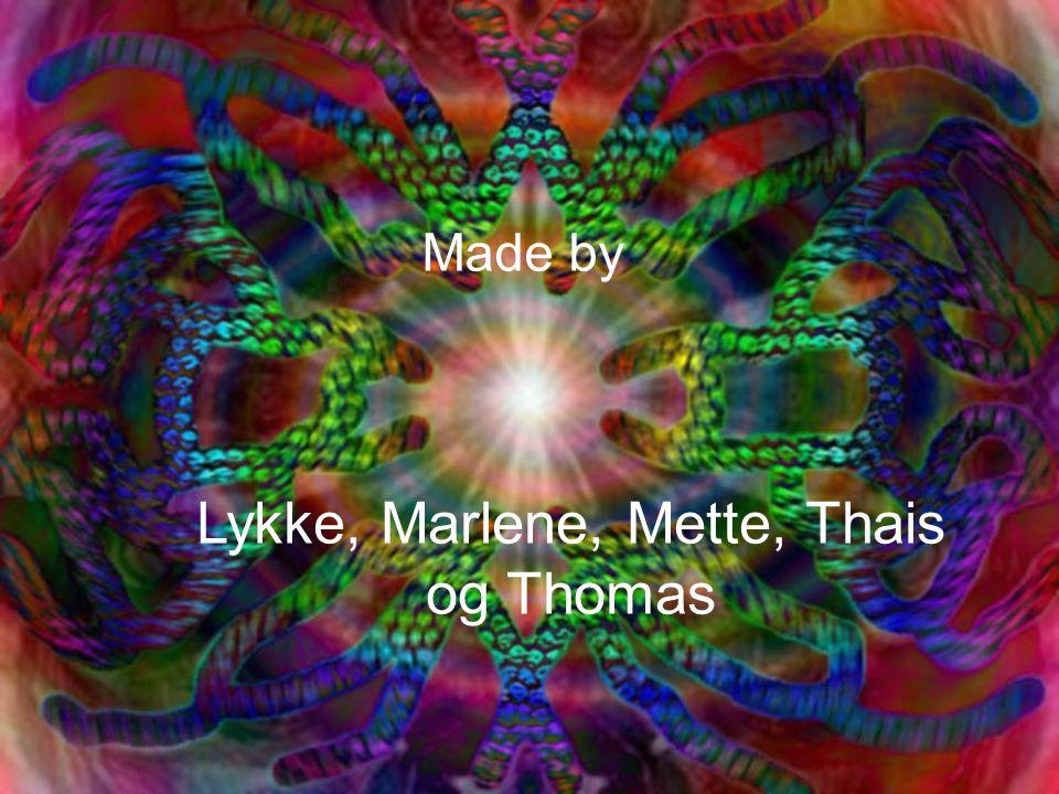 Lykke, Marlene, Mette, Thais og Thomas