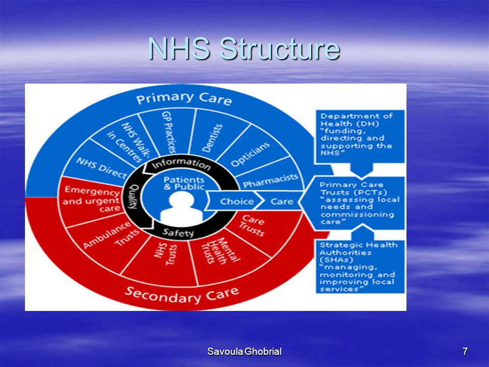 NHS Structure Savoula Ghobrial