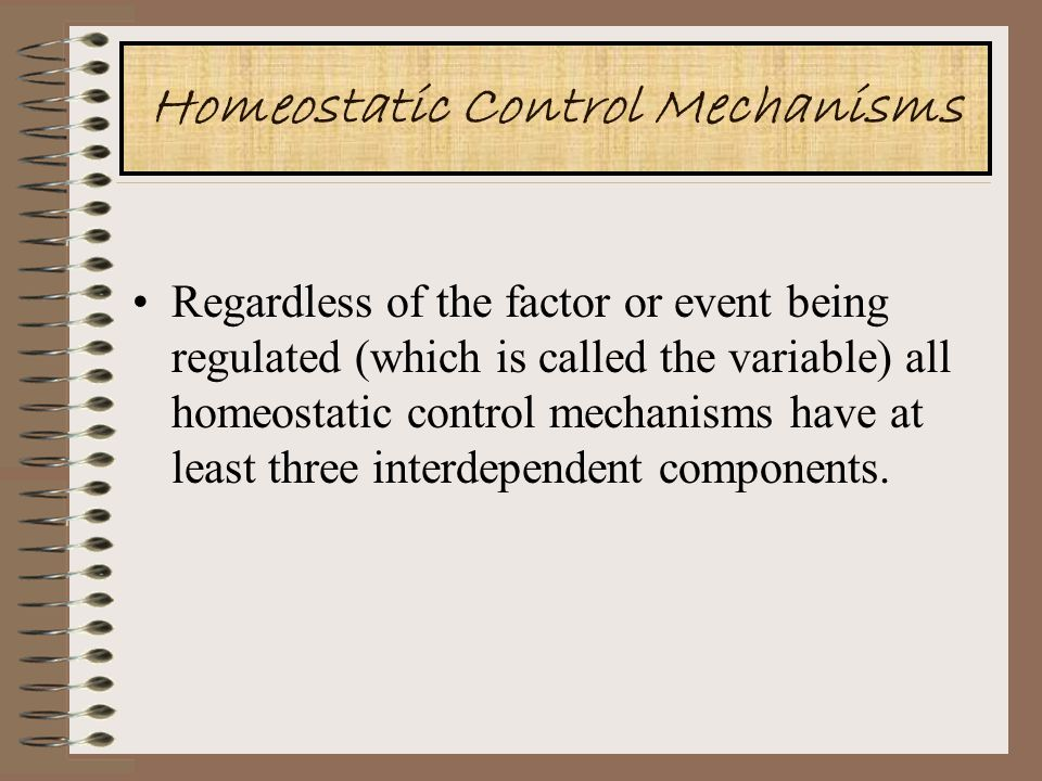 Homeostatic Control Mechanisms