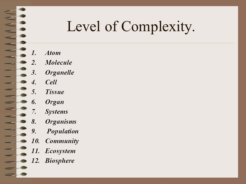 Level of Complexity. Atom Molecule Organelle Cell Tissue Organ Systems