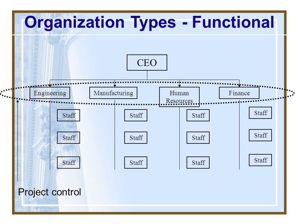 Organization Types - Functional