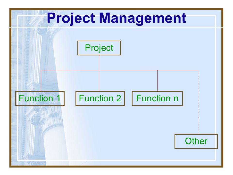 Project Management Project Function 1 Function 2 Function n Other