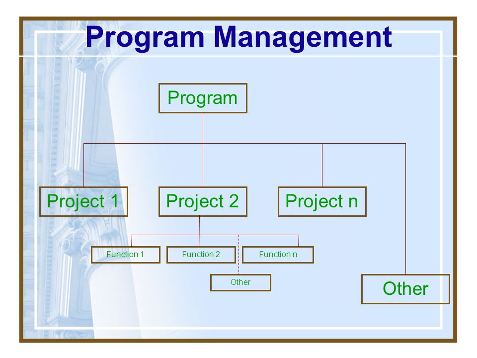Program Management Program Project 1 Project 2 Project n Other