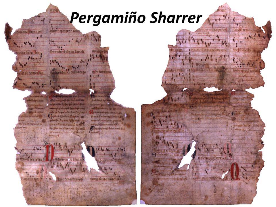 Pergamiño Sharrer