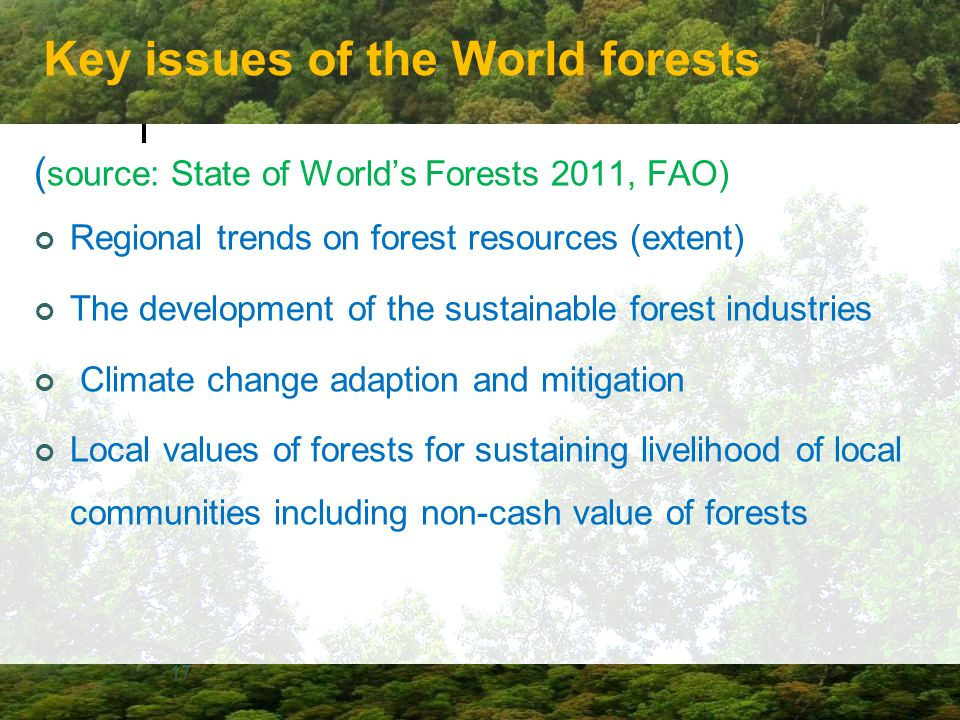 Key issues of the World forests