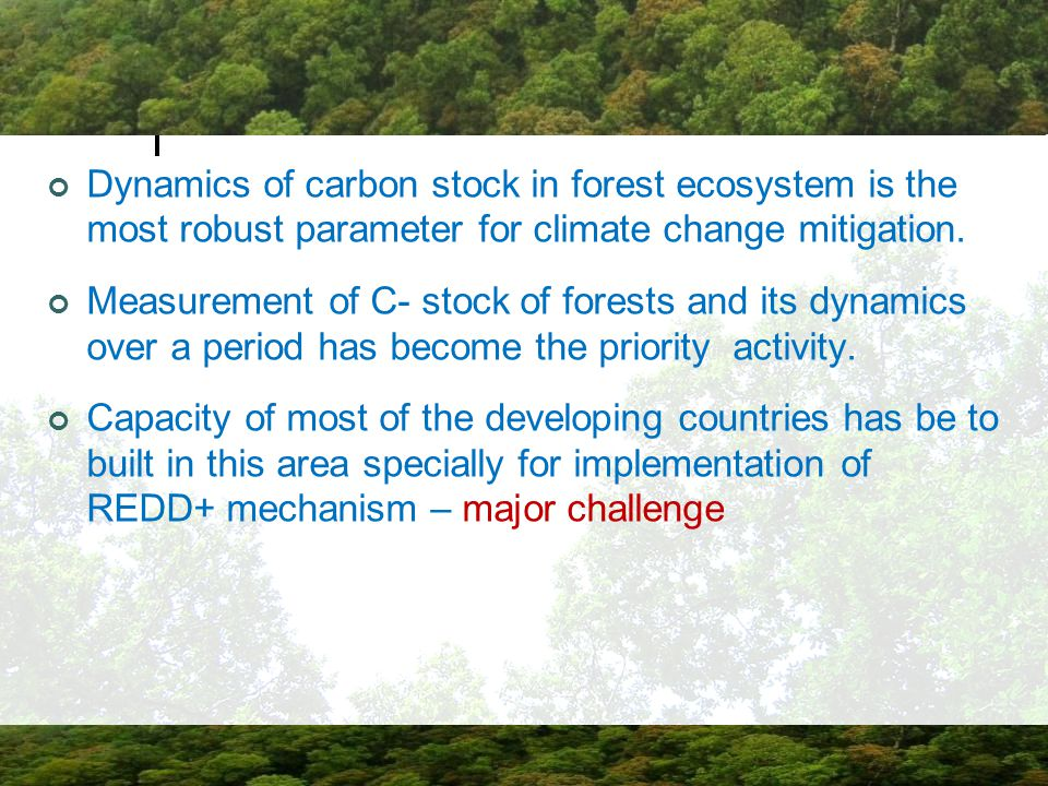 Dynamics of carbon stock in forest ecosystem is the most robust parameter for climate change mitigation.