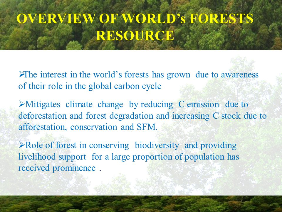 OVERVIEW OF WORLD's FORESTS RESOURCE