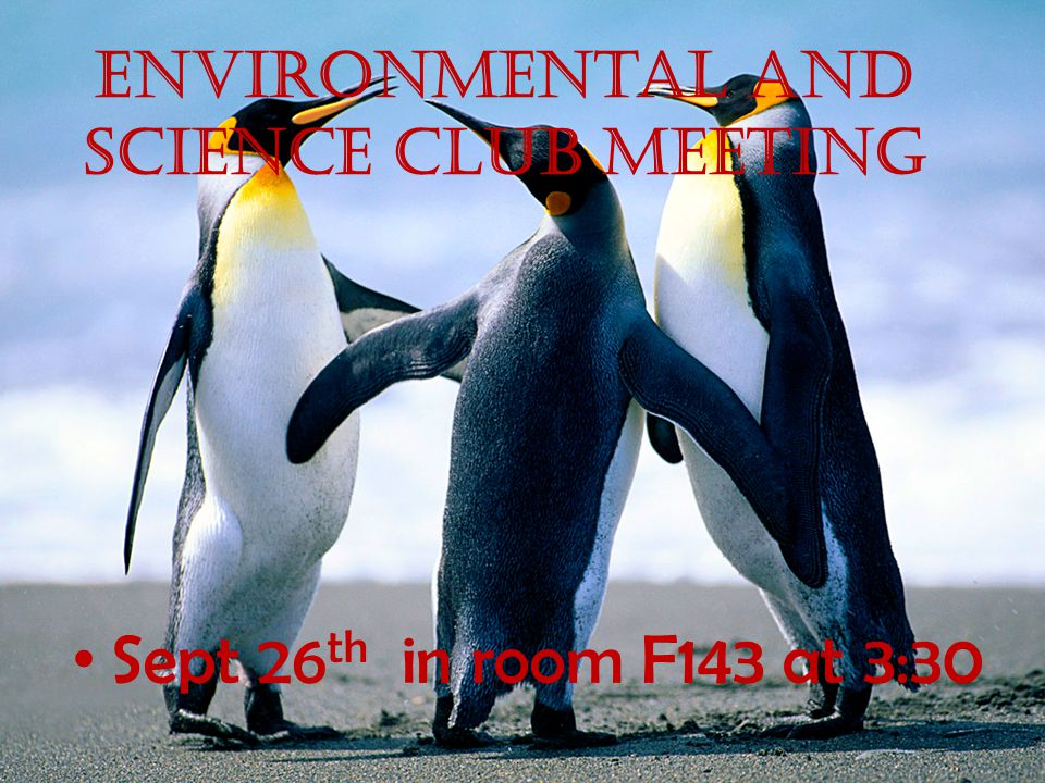 Environmental and science club Meeting